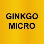 Ginkgo Microtexturizado