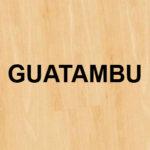 Guatambú